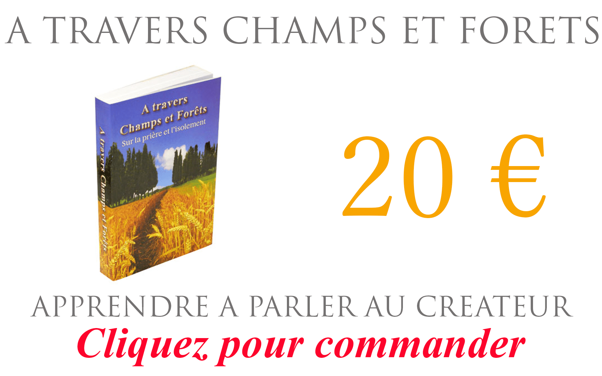 A TRAVERS champs et foret